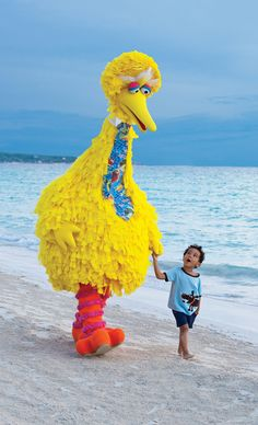 Big Bird on the Beach with a Beautiful Child, Adorables !!  We Love Everything About PBS :: Thank Goodness for the Public Funding That Makes This All Possible !!  :)