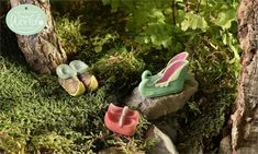 Image result for fairy garden shoe
