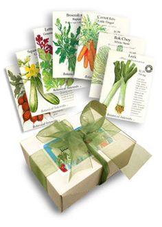"""Botanical Interests Seeds– """"At Botanical Interests our goal is to inspire AND educate so that you can create beautiful and successful gardens. """" No GMOs – recently, we enthusiastically signed the SAFE SEED PLEDGE: We do not knowingly buy or sell genetically engineered seeds or plants."""