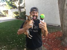 Perfect for all breeds, the included tennis ball is bright orange and green to ensure it catches your dog's eye and keeps his focus.