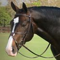 Dover Saddlery - Quality English Horse Tack & Horse Supplies