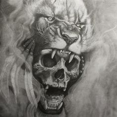"266 Likes, 7 Comments - Marcus_Manfredi (@hidalgotattoo) on Instagram: ""✏️ #marcusmanfredi #hidalgotattoo #draw #pencil #skull #lion"""