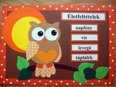 Classroom, Teaching, Education, Children, School, Crafts, Manualidades, Owls, Crafting