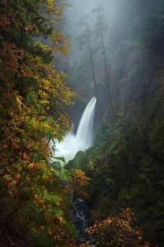The beautiful Metlako Falls located in the Columbia River Gorge in Oregon on a rainy and foggy fall morning  taken Saturday [OC] [8001200] #reddit