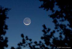 31 best rosh chodesh images  rosh chodesh new moon