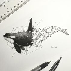 Lovely Half-Geometrical Drawings of Wild Animals Filipino illustrator Kerby Rosanes unveils a new graphic project in black and white titled Geometric Beasts, that highlights animals whose body is only composed of geometrical shapes that fit into each othe Geometric Drawing, Geometric Art, Geometric Animal, Geometric Designs, Art And Illustration, Animal Illustrations, Illustrations Posters, Animal Drawings, Orca Tattoo