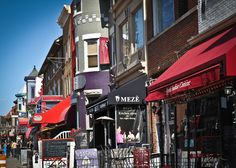Washington, DC--I took a walk around Adams Morgan just to enjoy the beautiful weather. Temperatures are around mid 70's and there are flowers blossoming all over the place. It is actually kind of weird to hear all the birds singing so early in the season.