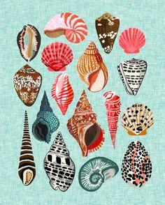 Seashells Ocean Nautical Beach Seaside Children Kids Baby Home Dec Shell Illustration Andrea Lauren Art Print by Andrea Lauren Design - X-Small Beach Illustration, Andrea Lauren, Shell Art, Art Inspo, Sea Shells, Art Drawings, Illustrations, Artsy, Art Prints