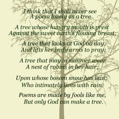 country song meet me by the tree