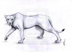 Heart of a lion, strength of a warrior. A warrior is always ready for whatever is thrown at them