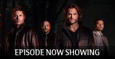 47 Days / 8 Hours / 34 Minutes left until #Supernatural - 12.09 - First Blood