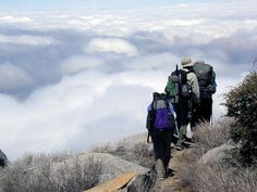 You don't have to disappear for months to enjoy the Pacific Crest Trail. Most people are out for less than a week. The PCT provides for a rich lifetime of day, weekend and week-long trips. Find a trip If you're unfamiliar with the PCT, we recommend starting with one of the trail's guidebooks. They represent thousands …