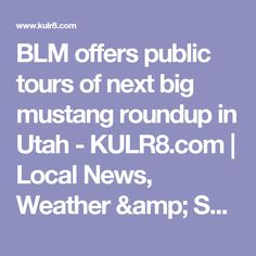 BLM offers public tours of next big mustang roundup in Utah - KULR8.com | Local News, Weather & Sports | Billings, MT