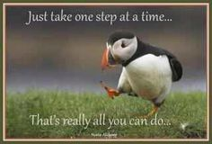 one step at a time