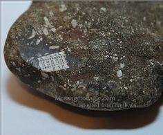 250-Million-Year-Old Stone With Microchip