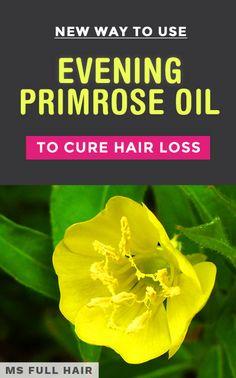Hair Loss Remedies Evening Primrose Oil for Hair Loss – Try This NEW Method Oil For Hair Loss, Stop Hair Loss, Prevent Hair Loss, Primrose Oil, Evening Primrose, Dramatic Hair, Hair Falling Out, Hair Breakage, Hair Loss Women