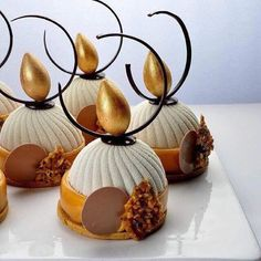 haollee# world master class # with Master Chef Michel Willaume. End of a complete success! Shared by Where YoUth Rise. Small Desserts, Fancy Desserts, Gourmet Desserts, Plated Desserts, Delicious Desserts, Dessert Recipes, Dark Chocolate Mousse, Chocolate Art, Pastry Art
