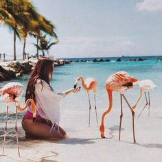 . wanderlust europe photography beautiful adventure mountain explore inspiration tips landscape van life road trip beach day blue flamingo pink