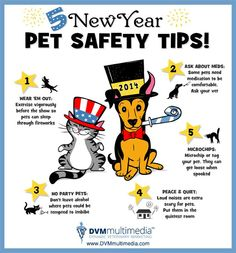 5 New Year Pet Safety Tips!