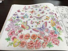 1598 Best Flowersflowers Images On Pinterest