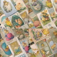 Huge Vintage Lot of  Vintage Easter CHICKS ~chickens~ Antique Postcards-kkk192