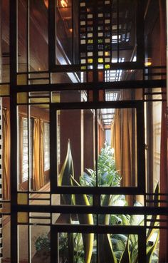 Frank Lloyd Wright art glass, lighting, plants -- beautiful!