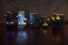 Night Lamps Out Of Hand-Picked Crystals, Fallen Timber And Tree Mushrooms