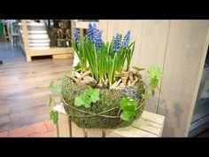 Frühlings-Moos-Schale - YouTube