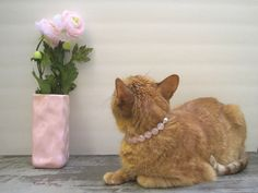 Rose Quartz Cat Collar, Hand Knotted Cat Jewelry Collar with Magnetic Ball Clasp, Pet Healing Stone, Holiday Pet Gifts