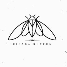 Simple Cicada drawing Tattoo Idea