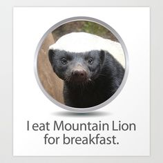 fc1426dbec1 I eat Mountain Lion for breakfast. -OS XI Honey Badger Art Print by Joy