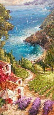 Amalfi Vineyard