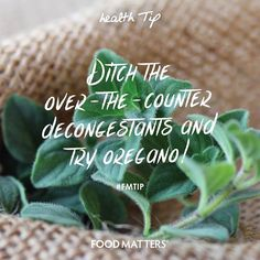 Ditch the over-the-counter decongestants and try oregano! Although oregano is best known for boosting the immune system, its hidden powers as a natural decongestant and antihistamine are often underestimated. Due to the natural compounds carvacrol and rosmarinic acid content. So next time you are feeling congested, try adding some oregano into your diet to help clear the respiratory tract and nasal passage. Have you tried this? www.foodmatters.tv