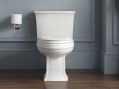 Kohler Archer toilet