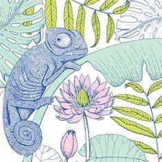 chameleon, botanical, hawaii, tropical, waterlily