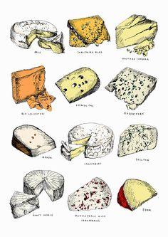 ストックイラストレーション : Different types of cheese