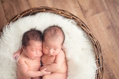 Honoring Achievements in Newborn Photography! Newborn Poses, Newborns, Twin Ideas, My Favorite Image, Newborn Photographer, Amy, Photographers, Twins, Amazing
