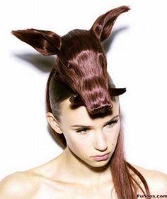 Animals look hairstyles- Warthog
