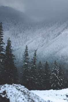 Percy limped through the snow, his right shoulder bleeding badly from a bullet wound. (Open Roleplay.) #WinterLandscape Dark Winter, Winter Snow, Winter Love, Winter Magic, Winter Is Coming, Winter Christmas, Winter Beauty, Snow Forest, Alpine Forest