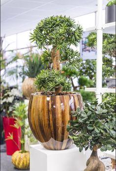 Detail kunstplanten en plantenbakken showroom Ede.