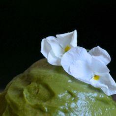 Avocado-sitruunakreemi / vegaaninen muffinssinkuorrute