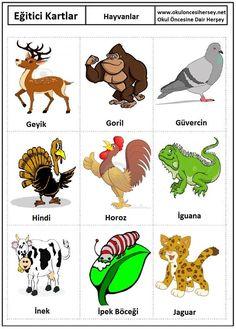 Okul öncesi Hayvanlar eğitici kartları Preschool Activity Books, Kids Learning Activities, Turkish Lessons, Learn Turkish Language, Learn English Words, Primary School, Educational Toys, Teaching, Cards