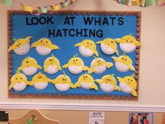 Our lesson was Animals on the Farm and this fun art project allowed the children to make their chickens Hatch out of the eggs. This was also perfect timing because our school had the chance to see real baby chicks hatch. Preschool Director, Farm Lessons, Hatching Chickens, March Themes, Preschool Bulletin Boards, Classroom Treats, School Displays, Fun Arts And Crafts, Kindergarten Lessons
