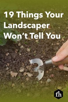 Add as much as 15% to your home's value with these expert landscaping tips. Garden Yard Ideas, Lawn And Garden, Backyard Games, Backyard Ideas, Small Gardens, Outdoor Gardens, Container Gardening, Gardening Tips, Lawn Problems