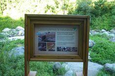 Cartel de avistaje de aves para Parque Los Sosa · Tucuman · Argentina · Sign - park - birds · Cecilia Estrella Design