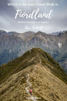 The Routeburn, Milford or Kepler Track: which is the best Great Walk in Fiordland? — Walk My World New Zealand Itinerary, New Zealand Travel Guide, Auckland, Milford Track, Milford Sound, New Zealand South Island, Great Walks, Walking In The Rain, Travel Guides