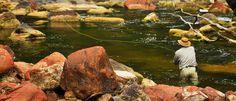 La expectativa de poder ver un dorado en las aguas del río Juramento en #Salta justifica las horas de paciente espera.