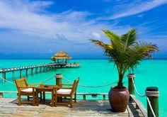 #Мальдивы  Тишина и спокойствие, богатый подводный мир и местная фауна, первоклассные отели и райские пляжи с белоснежным и мягким, как пудра, песком. Главная специфика отдыха на островах – полное единение с природой и глубокая релаксация вдали от суеты и сумасшедшего городского ритма.