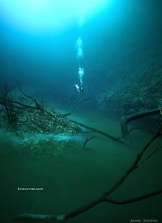 Underwater river.. I say whot?