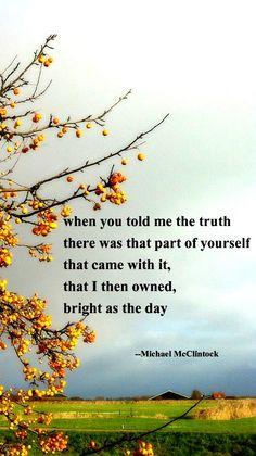 Tanka poem: a dragonfly --by Michael McClintock.   Tanka Poetry by ...